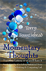 Momentary ThoughtsFront Cover